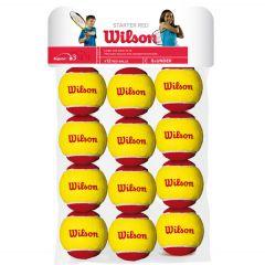 Wilson Starter red tennis balls | Best4SportsBalls