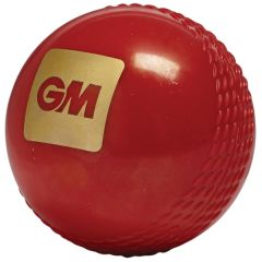 GM Tru Bounce cricket balls printed | Best4SportsBalls