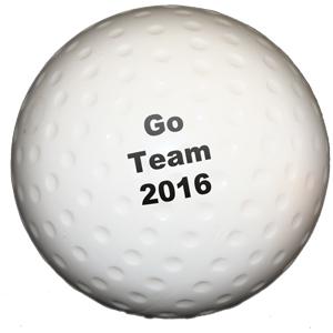 https://www.best4sportsballs.com/pub/media/catalog/product/p/r/printed-hockeyball-1_1_1.jpg