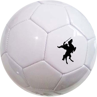 https://www.best4sportsballs.com/pub/media/catalog/product/w/h/white_logo.jpg